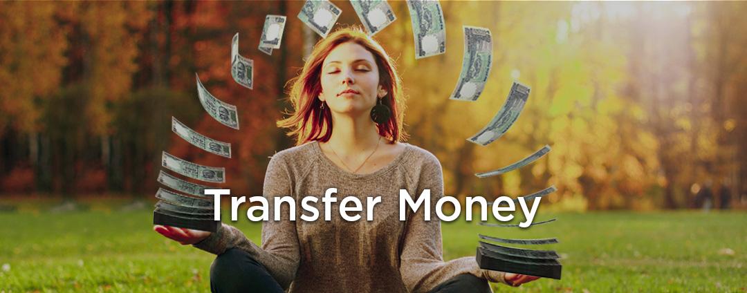 Sendor-request-money